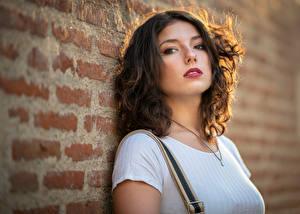 Фотография Размытый фон Стена Кирпичный Взгляд Шатенка Lisa молодая женщина