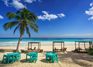 Фото Мексика Берег Небо Пляжа Пальма This Hip Hotel, Tulum, Quintana Roo Природа