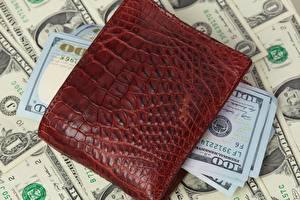 Обои Деньги Доллары Банкноты Бумажник 100