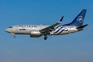 Обои для рабочего стола Самолеты Пассажирские Самолеты Boeing TAROM Romanian 737-700W Авиация