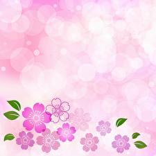 Картинки Розовый Шаблон поздравительной открытки Цветы