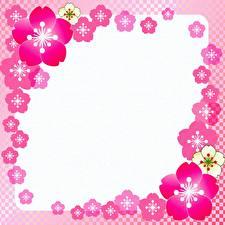 Фотографии Розовая Шаблон поздравительной открытки цветок
