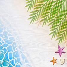 Фотографии Море Ветвь Отдыхает Шаблон поздравительной открытки