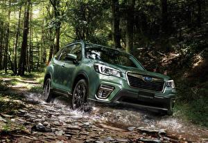 Картинки Subaru Зеленые Кроссовер 2019-20 Forester X-Edition машина
