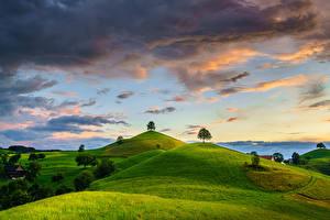 Фотографии Швейцария Холм Деревья Облачно Canton of Zug Природа