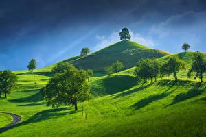 Картинка Швейцария Небо Холмы Деревья Canton of Zug Природа
