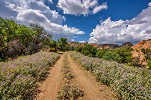 Картинки Штаты Дороги Небо Облачно Arizona, Prescott Valley Природа