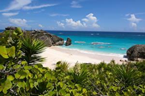 Фотография Великобритания Океан Остров Побережье Пляже South Shore Park, Bermuda