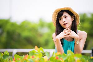 Картинки Азиаты Руки Шляпа Боке девушка