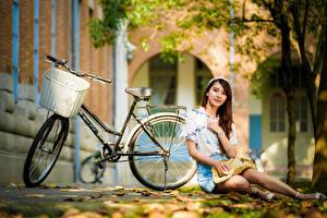 Фотография Азиатки Сидя Лист Велосипеды Юбка Блузка Взгляд молодая женщина