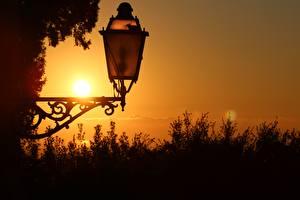 Фотография Крупным планом Рассвет и закат Уличные фонари Природа