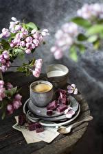 Обои Кофе Капучино Молоко Цветущие деревья Мармелад Кружке Ветка Еда