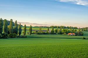 Фотографии Чехия Поля Здания Дерево Bohemian landscape