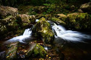 Картинка Англия Лес Камень Ручеек Мхом Lake District, Ullswater, Cumbria