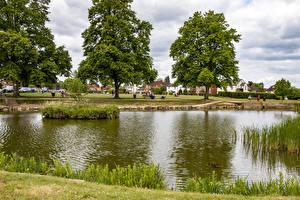 Обои Англия Пруд Деревьев Поселок Tylers Green Природа