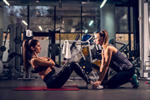 Обои для рабочего стола Фитнес Спортивный зал Тренировка Вдвоем ABS спортивный Девушки