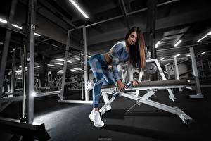Картинки Фитнес Спортзале Тренировка Гантеля спортивная Девушки