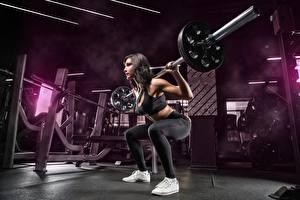 Фотографии Фитнес Спортзал Тренировка Поза Штанга Спортивный Спорт Девушки