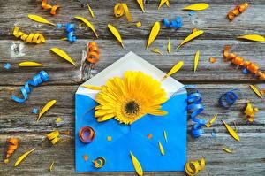 Картинка Гербера Креативные Конверт цветок