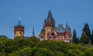 Картинки Германия Замок Дерева Башня Drachenburg Castle, North Rhine-Westphalia Природа