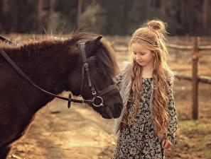 Фотография Лошадь Пони Девочка Волосы Victoria Dubrovskaya Животные Дети