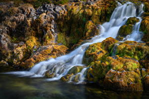 Фотографии Исландия Водопады Камень Реки Мха Dynjandi waterfall, Westfjords Природа