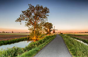 Обои Нидерланды Дороги Поля Мельница Деревья Alblasserwaard Природа