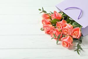 Фотография Роза Букеты Бумажный пакет Доски Шаблон поздравительной открытки Цветы