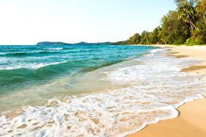 Фотографии Море Волны Тропический Пена Пляже