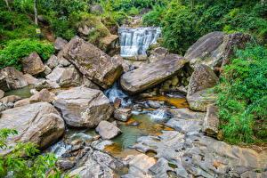Обои Шри-Ланка Речка Камень Ручеек Nuwara Eliya Природа