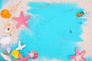 Картинки Морские звезды Ракушки Шаблон поздравительной открытки Песка