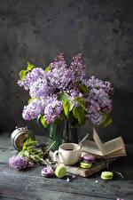 Обои для рабочего стола Натюрморт Сирень Чашке Макарон Книга цветок