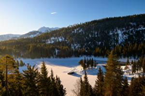 Фотографии Швейцария Горы Леса Утро Озеро Lake Cauma, Flims Природа
