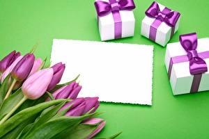 Фото Тюльпан Фиолетовых Подарки Шаблон поздравительной открытки цветок