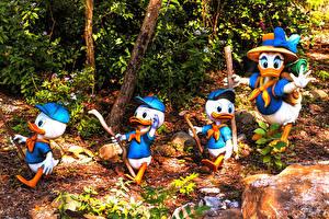 Обои США Парк Утка Флорида Дизайн Disney's Animal Kingdom park Природа