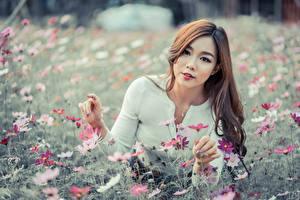 Фотография Азиатки Шатенки Смотрит Рука Миленькие девушка