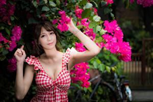 Фото Азиатки Шатенки Рука Смотрит Вырез на платье девушка