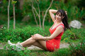 Фото Азиатки Сидит Платье Ноги Улыбается Взгляд Боке Брюнетка Девушки
