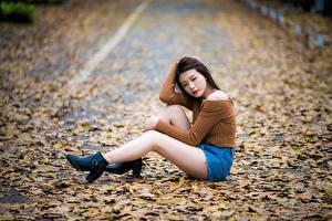 Картинка Азиатка Сидящие Ноги Шорты Листья Размытый фон Девушки