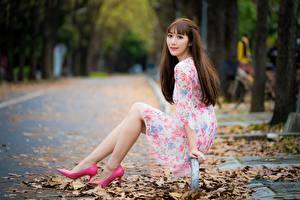 Фотографии Осенние Азиаты Листва Шатенки Сидит Платье Ног Туфель молодая женщина