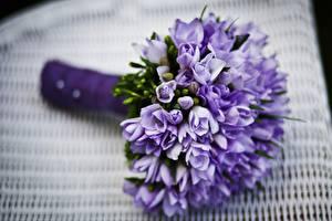 Фотография Букеты Лаванда Вблизи Размытый фон Фиолетовая Цветы