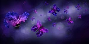 Картинки Бабочка Оригинальные Лепестки Цветы