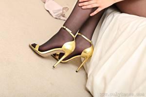 Фото Крупным планом Ноги Туфель Колготках молодые женщины