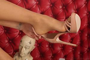 Фотография Крупным планом Татуировки Ноги Туфель Колготках
