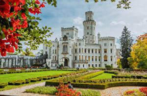 Картинки Чехия Замки Ландшафтный дизайн Газоне Кусты Hluboka Castle город