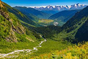 Фото Грузия Горы Лес Пейзаж Долина Ushba glacier, Mestia