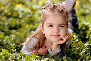 Картинки Траве Девочка Взгляд Лежа ребёнок
