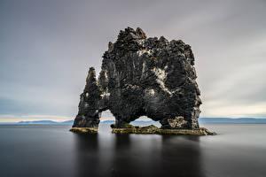 Фотографии Исландия Море Скалы Hvítserkur, Vatnsnes Природа