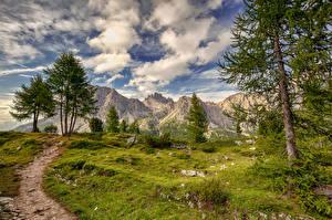 Картинки Италия Горы Облачно Деревья Альпы HDR Тропа Falzarego, Dolomites Природа
