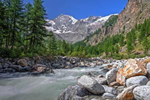 Картинка Италия Парки Гора Леса Речка Камни Valle d'aosta, Gran Paradiso national Park Природа